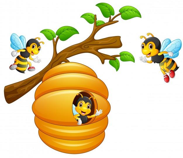 Eucalyptus Oil & Manuka Honey Health Patch